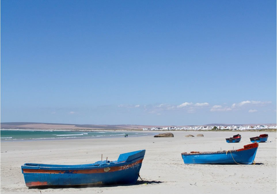 The Latest from Paternoster