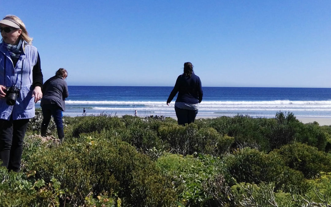 Exploring our hunter-gatherer past & palates in Paternoster